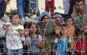 pengungsi syria